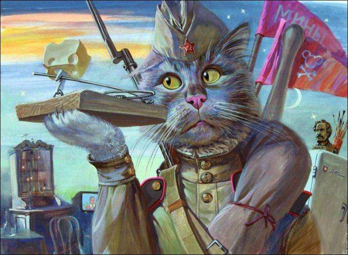Хоробрі коти (14 фото)