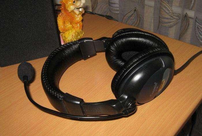 Не забувайте перевірити навушники перед їх використанням (3 фото)
