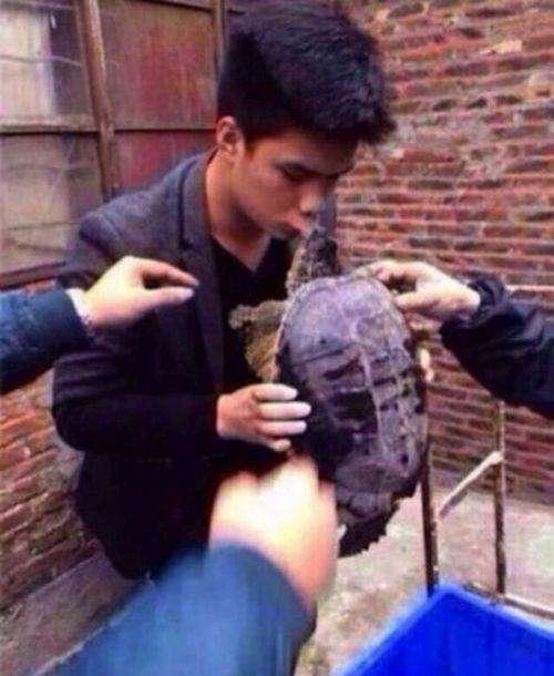 Не треба було цілувати черепаху (5 фото)