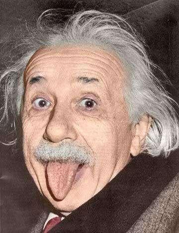 Ейнштейн, прикольна жаба (29 фото)