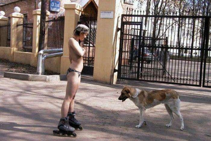 Сороміцькі картинки для дорослих (51 фото)